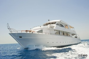 Yacht Rentals copy
